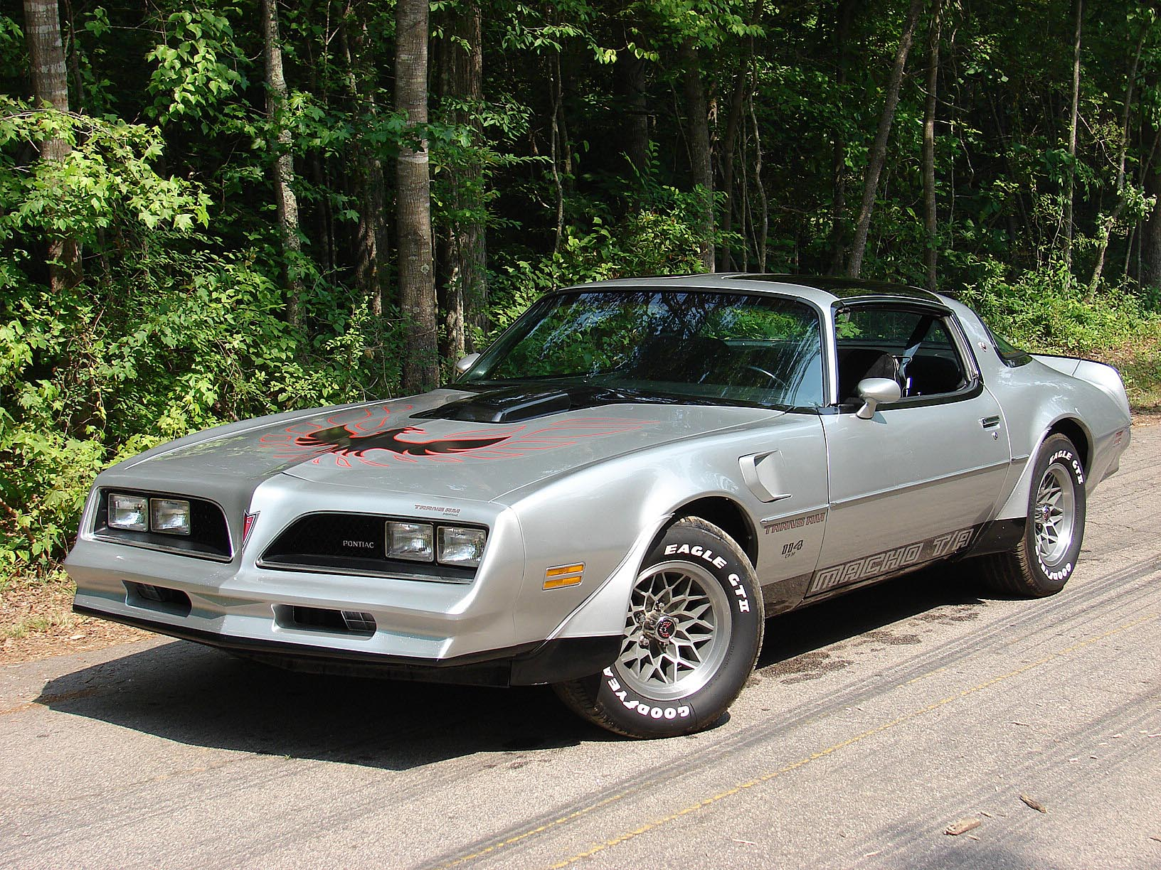 Macho Trans Am For Sale 2014