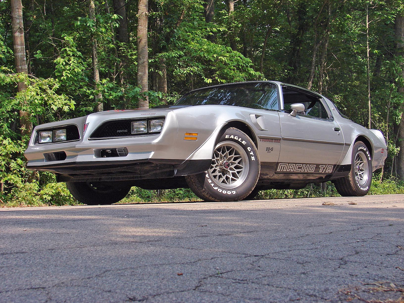 1978 Macho Trans Am 114