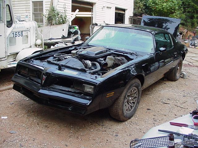 1977 Bandit Trans Am Restoration